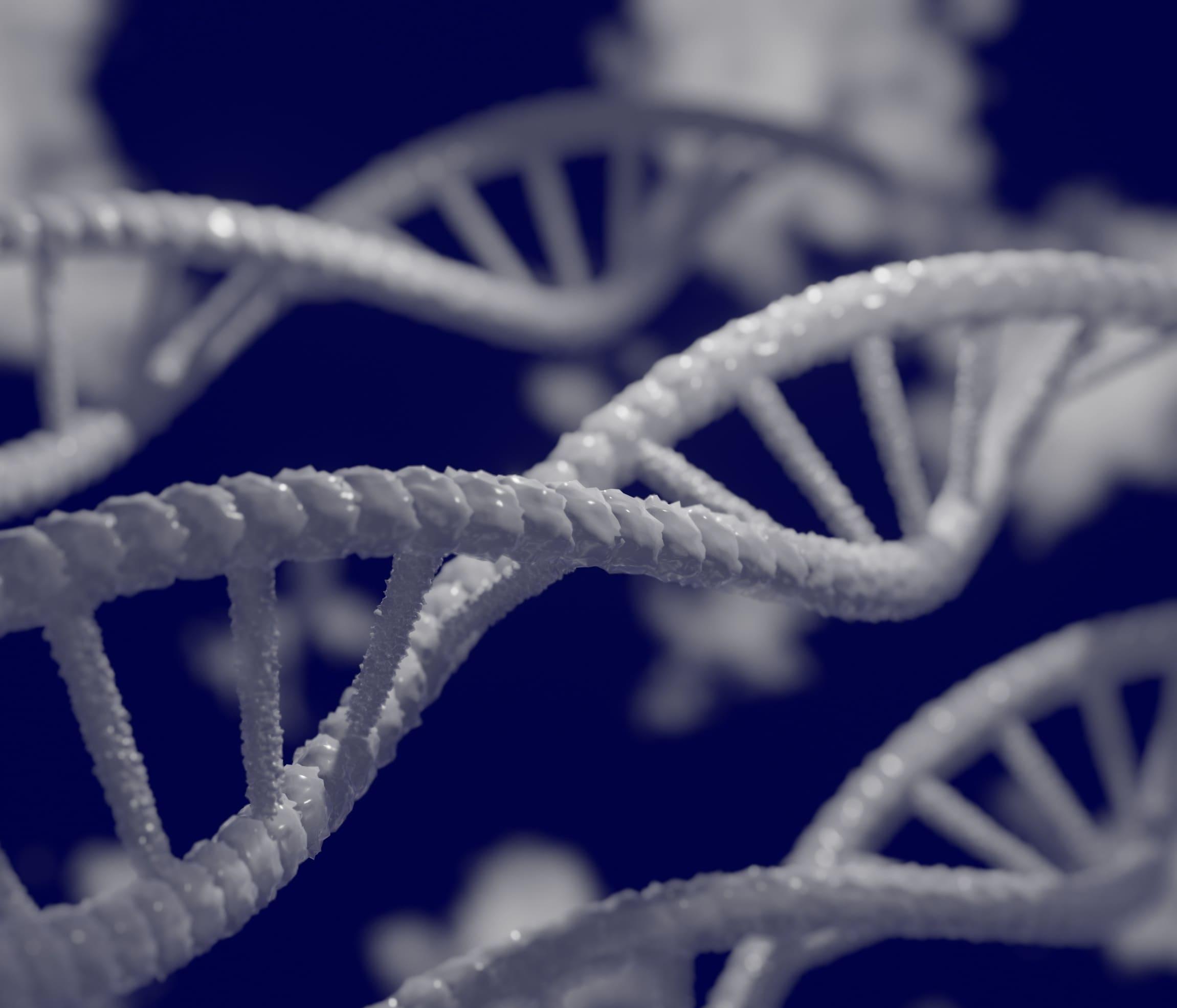 Azulejos cerámicos con ADN - Porcelánicos HDC